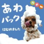 ☆NEW☆ トリミングオプション登場!!